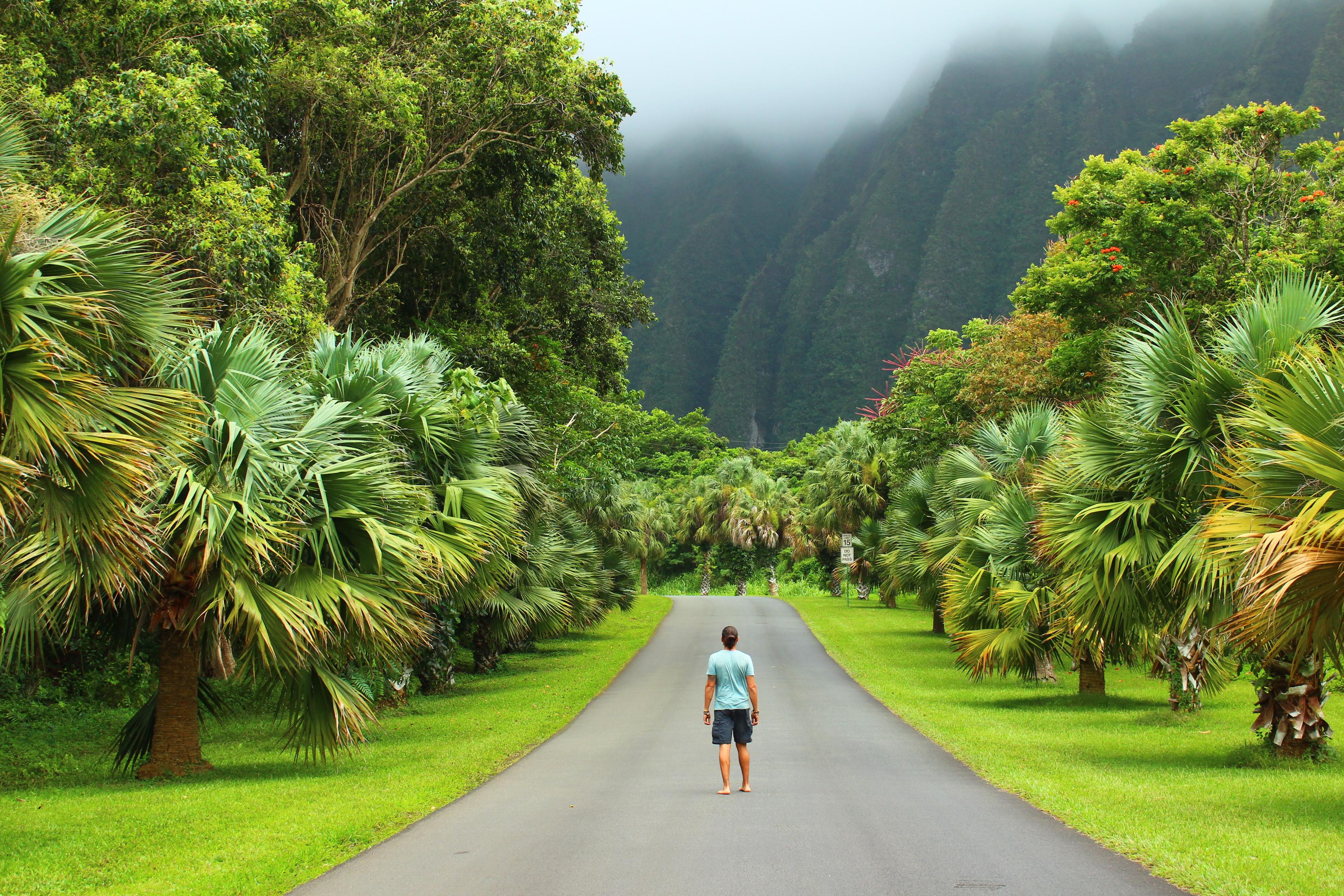 30 Cosas para hacer en Oahu Hawaii - Vagamundeando